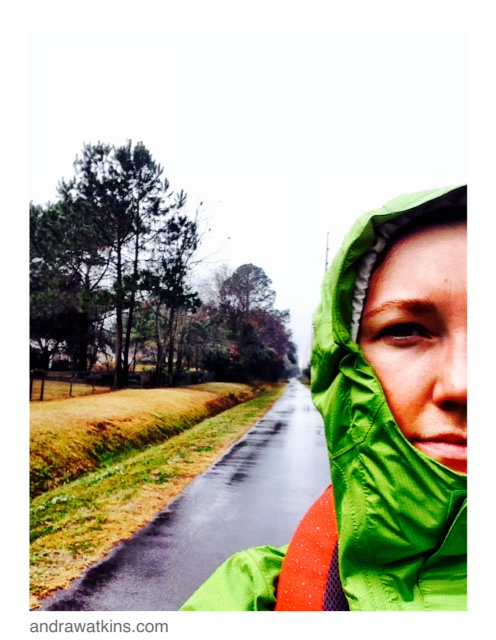 natchez trace walk, to live forever book