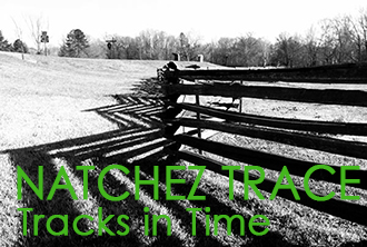 Natchez Trace: Tracks in Time A Book of Photography