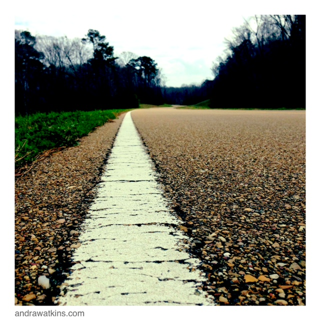 walk the natchez trace line
